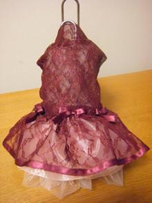 シフォンちゃん1ドレス